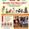 Me-O Wonder Cat show 2017 [26-Nov]
