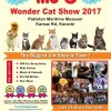 Me-O Wonder Cat show 2017 [26-Nov]